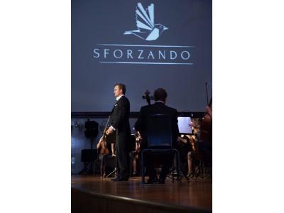 SFORZANDO  orchestra